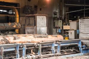 sawmill 2016-0925